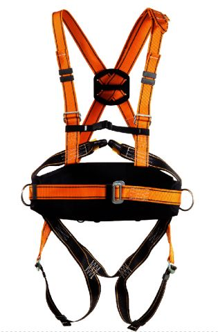 Where to find SAFETY HARNESS W LANYARD in St. Louis