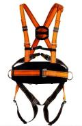 Rental store for SAFETY HARNESS W LANYARD in St. Louis MO